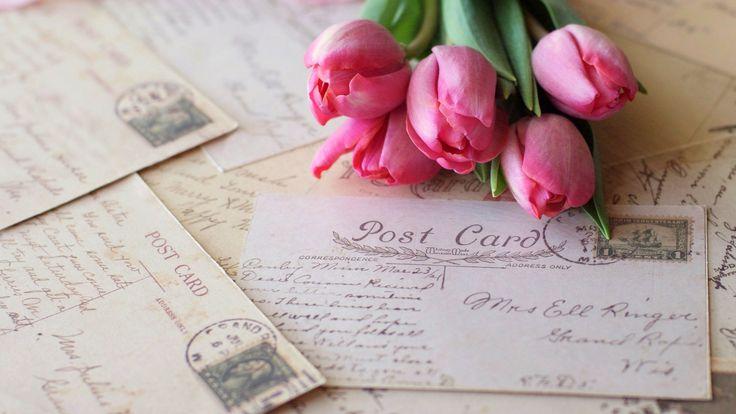 Скачать обои тюльпаны, розовые, цветы, письма, раздел цветы в разрешении 1920x1080