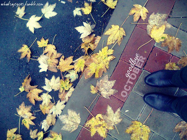 goodbye october / rain. autumn. leaves