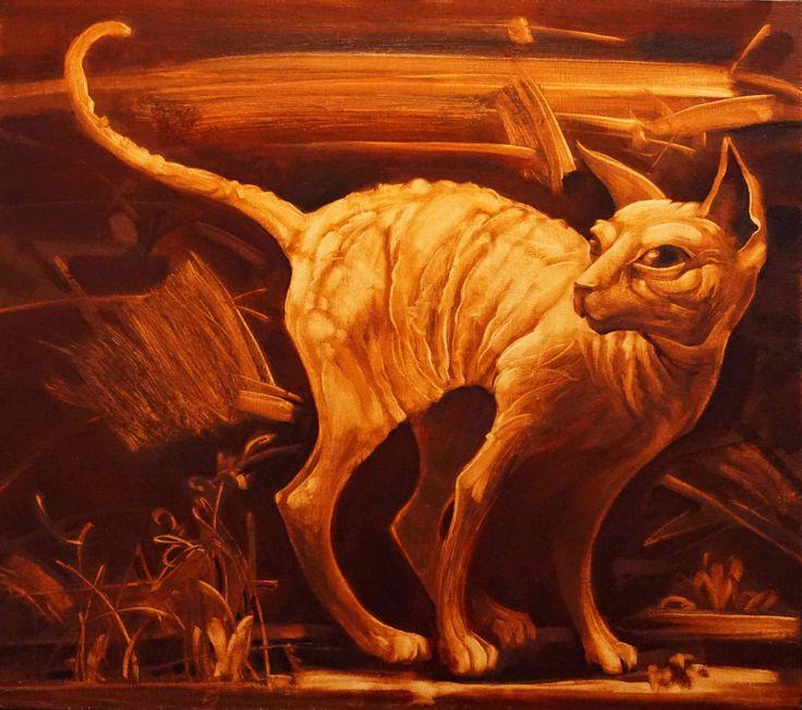 Кот сфинкс сиена. Sphinx Cat