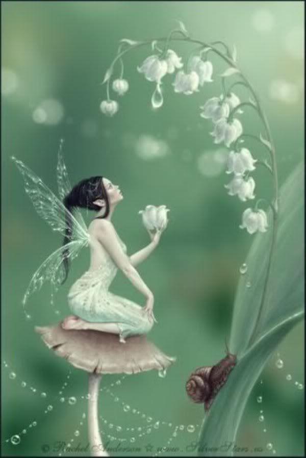 Fairy Anjels