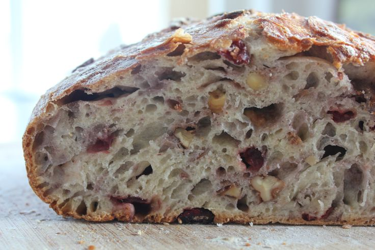 Clara Persis | No-Knead Cranberry Walnut Bread