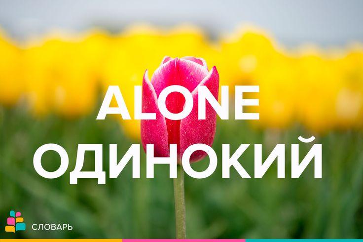 Alone |əˈloʊn| — один, одинокий, сам, только, в одиночестве  1) один, одинокий; в одиночестве: I want to be alone / Я хочу побыть в одиночестве.  2) один, единственный, отличный от других: He is not alone in his interests / Он не одинок в своих интересах.  3) уникальный, несравнимый: He is alone among them in devotion to duty / По преданности долгу его нельзя сравнить ни с кем из них.  http://amp.gs/tQBs  #одиночество