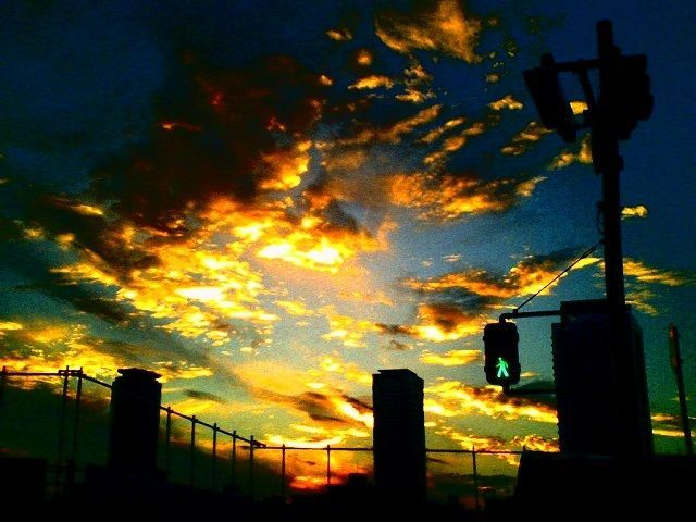 デジタルハリネズミ 3.0 - 空と青信号 -  空  夕焼け  青信号  雲  - Camera Talk -