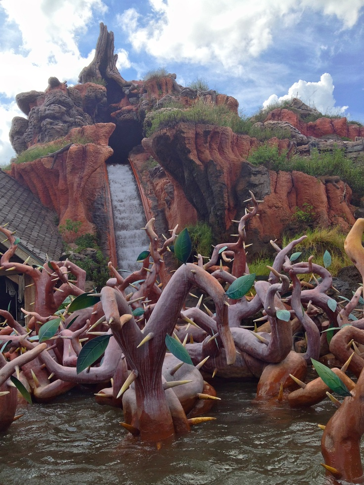 Splash Mountain in Critter Country