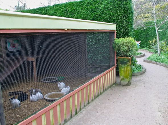 rabbit cage, I love this! Sure beats the one we have now