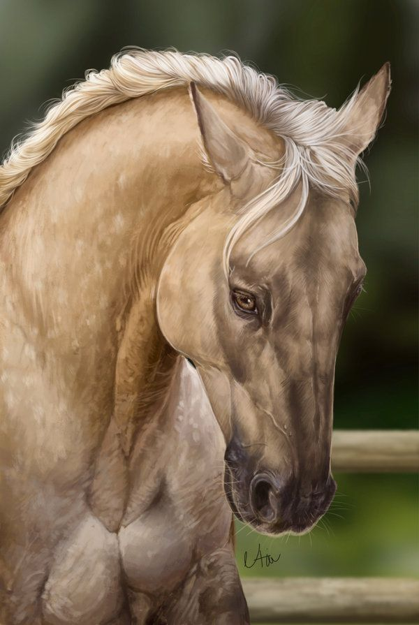 Commission forxCaerax This was omg..I just love this portrait, really hardcore color of the horse but I am satisfied WIP of this -= Info =- Time: 6 h Tools: Photoshop CS6 Extended...