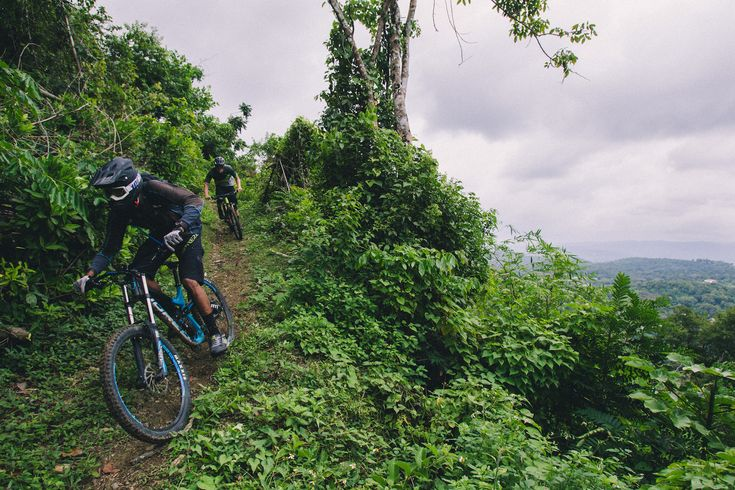 See this and more views from the Jamaica Fat Tyre Festival, our annual mountain biking festival.