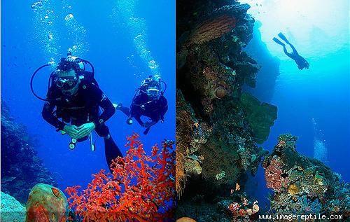 Bunaken Marine Park, North Sulawesi, Indonesia