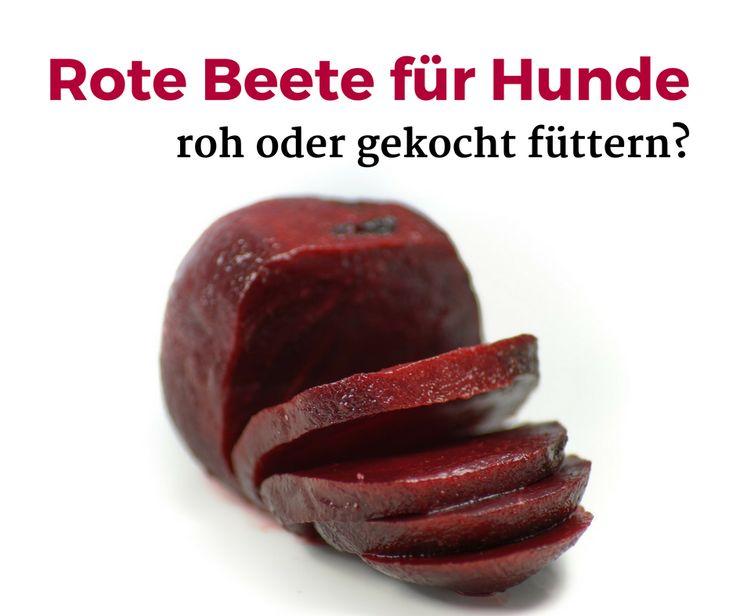 Rote Beete für #Hunde #roh oder #gekocht füttern? #RoteBeeteFlocken #getrocknet