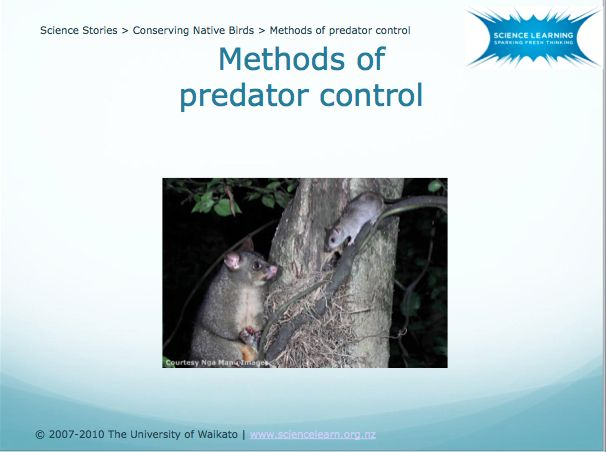 DOWNLOADABLE POWERPOINT - Methods of predator control -  Due to introduced mammalian predators, New Zealand has long been involved in conservation efforts to protect our threatened species. There are many methods of predator control currently used in New Zealand, all of which have positive and negative aspects. The PowerPoint presentation attached allows students to consider some of the pros and cons of various methods of predator control.