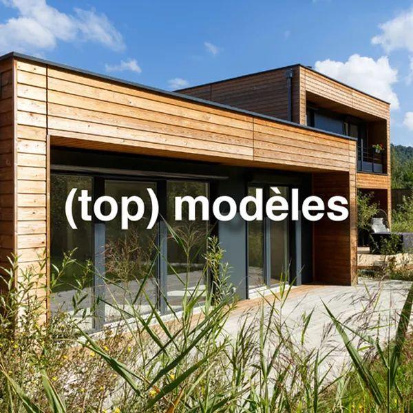 1000 id es sur le th me maison ossature bois sur pinterest ossature bois constructeur maison - Cuisine direct fabricant ...