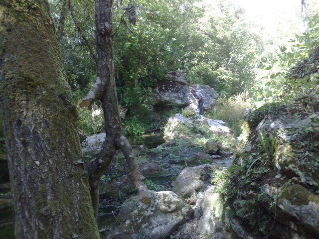 in un ambiente incontaminato, dominato da una natura selvaggia, con esempi di flora e fauna legati alla macchia mediterranea e panorami sull'intera Valle dei Latini.