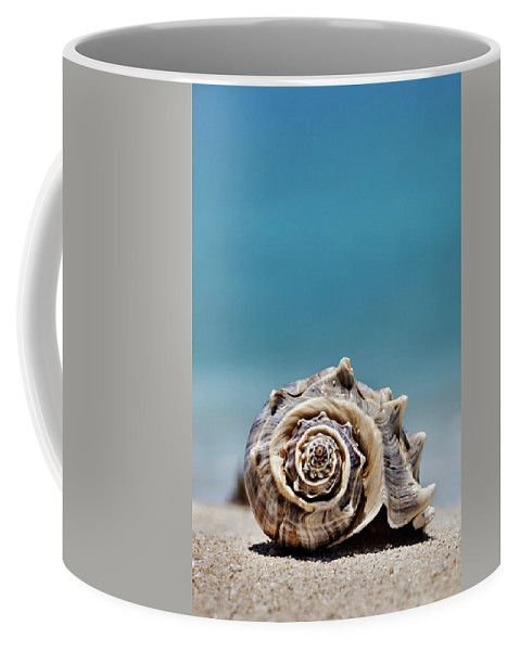 Coffee Mug featuring the photograph Seashell By Seashore by Evgeniya Lystsova. Sea shell with sea as background in Cancun, Mexico, vacation concept. Nice Mugs for your Home, Kitchen and Office Decor. Our ceramic coffee mugs are available in two sizes: 11 oz. and 15 oz. #EvgeniyaLystsovaFineArtPhotography #Coastal #Shell #Beach #Kitchen #Mug #HomeDecor #Gifts
