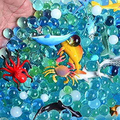 Amazon.com: AINOLWAY Water Beads Sea Animals Tactile Sensory Experience Kit – 24…