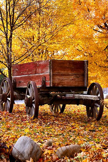 Antique Wagon and autumn colors by snehit  An old, historic wooden wagon in a field with leaves colorful autumn trees in the background