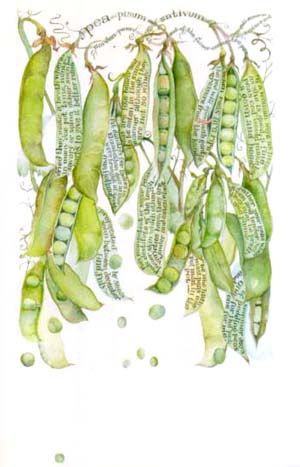I love how the artist incorporated the text into the piece! -->sara midda: Watercolor, Inspiration, Sara Midda, Illustration, Book, Botanical Art, Garden, Drawing