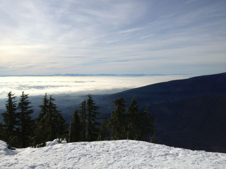 Mt Seymour Resorts
