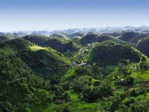 Blue Mountains Tour in Kingston Jamaica