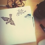 by ellenvingren Instagram photos for tag #ellenritar   Statigram