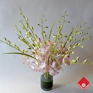 Dendrobium orchid arrangement on a glass cylinder