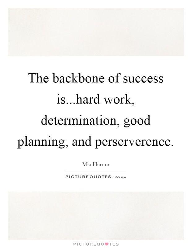 44 Unique Determination Hard Work Quotes