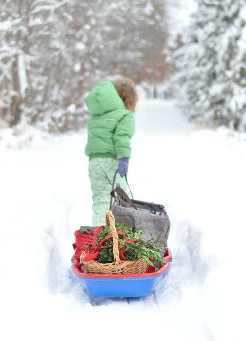 : Winter Snow, Seasons Holidays, Snow Winter, Boxwood Garland, Diy'S, Easy Boxwood, Winter Wonderland, Super Easy