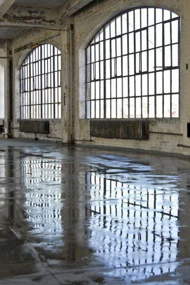 general/living room: windows industrial style