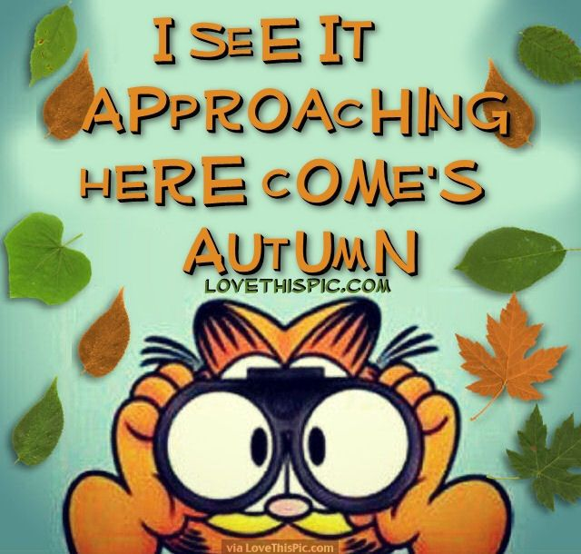 I See It Approaching Here Comeu0027s Autumn Autumn Fall Garfield Autumn  Quotes Fall Quotes Goodbye Summer