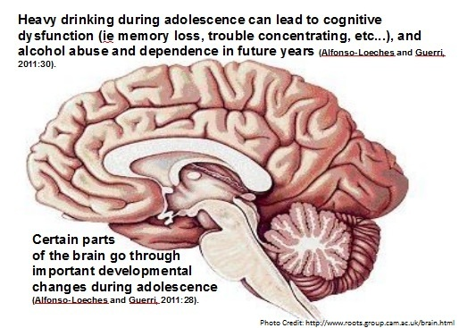 effects of alcohol on the adolescent Denial is often a byproduct of alcohol or other drug abuse at best, denial is a convenient means to protect the substance abuse, but at worst, it can lead to negative health consequences.
