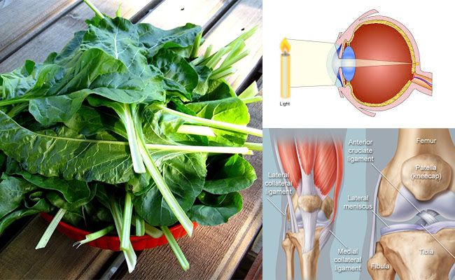 Swiss chard, for Strong Bones and Good Vision – Grab Your Healthy