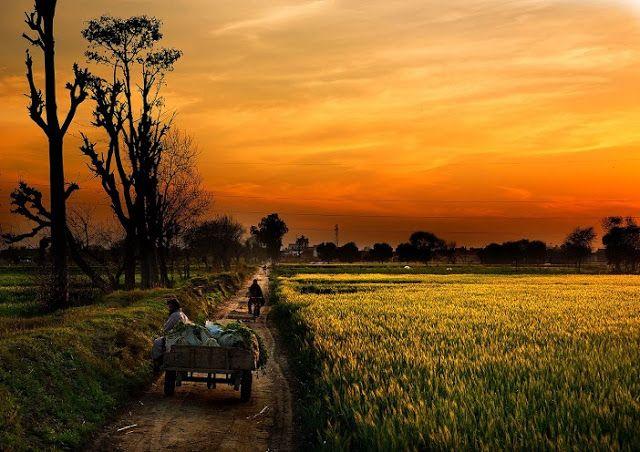 Sunset Village Life Punjab Pakistan Pinterest Pakistan