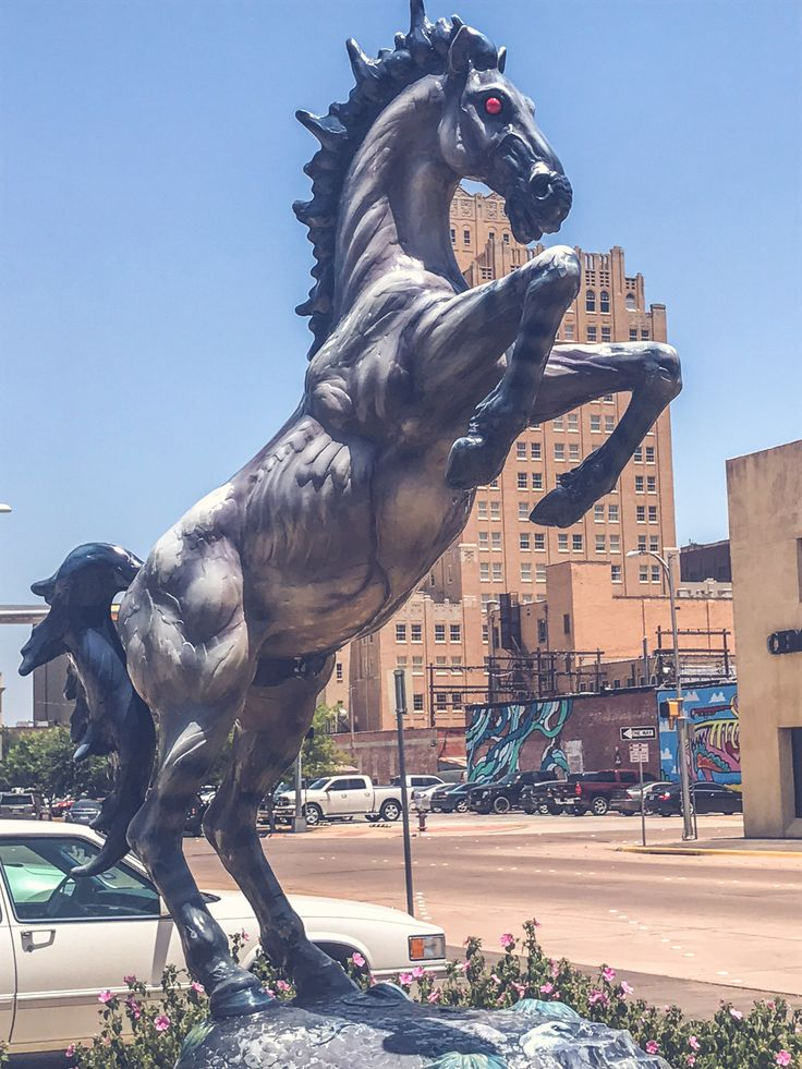 Mesteno, meaning for a spanish mustang, is a 8 foot