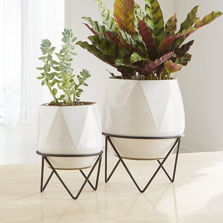 Aaro Planters With Stands Crate And Barrel Decor 400 x 300
