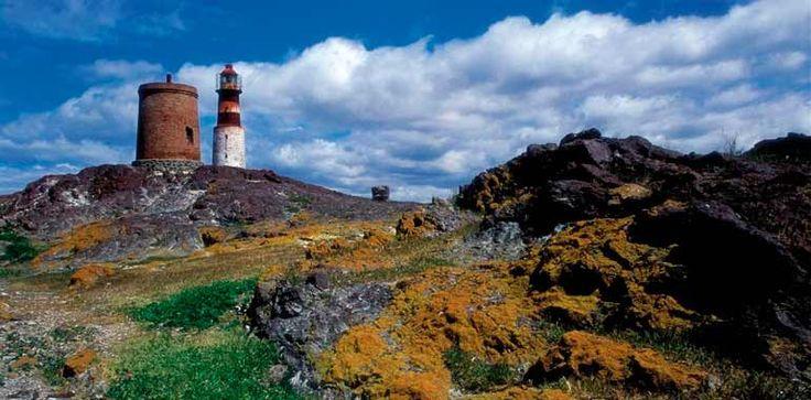 el Parque Interjurisdiccional Isla Pingüino es un área protegida que se encuentra en la eco-región marina plataforma patagónica.