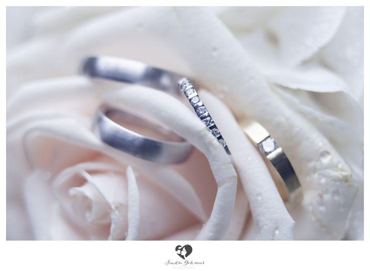 #ring #weddingring #wedding #groom #bride #braut #bräutigam #geschenk #present #love #forever #fuerimmer #engagement #engagementring #verlobung #verlobungsring #silver #gold #weddinghour #rose #drops #waterdrops #tropfen #tau #zart #dew