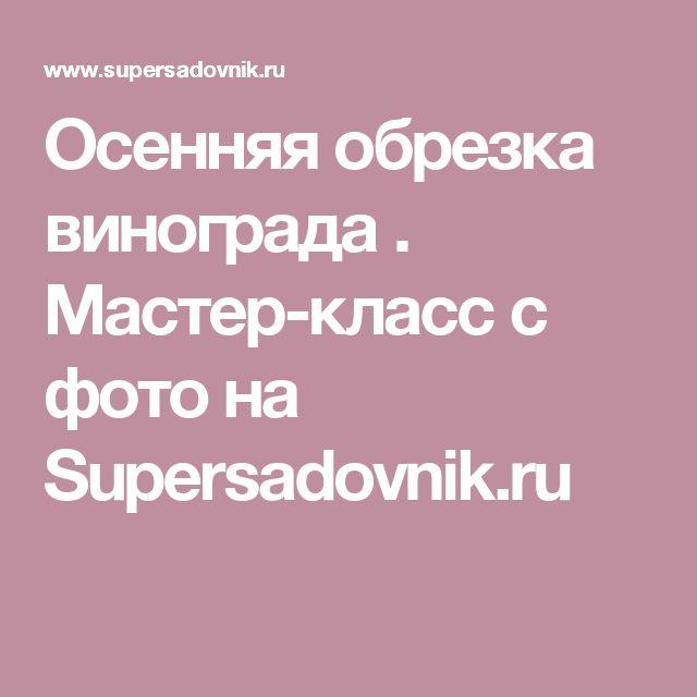 Осенняя обрезка винограда . Мастер-класс с фото на Supersadovnik.ru