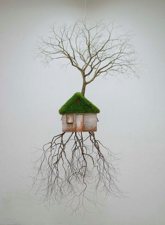 tree house - Jorge Mayet