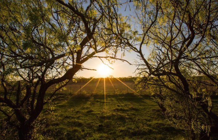 In Texas, Near Heaven - https://blog.landflip.com #realestate #auction #ranch #Texas