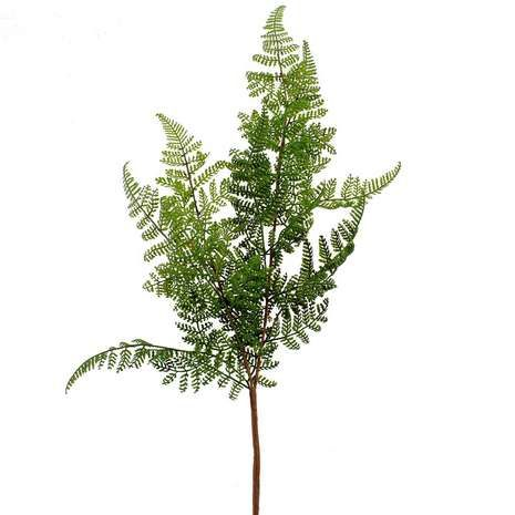 Made from durable materials, this asparagus fern stem provides a convenient addition to your artificial flower arrangement....