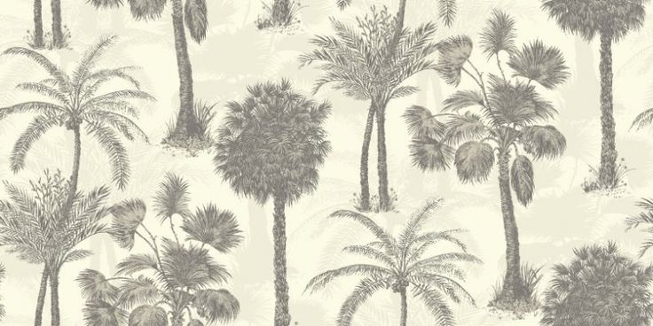 Coconut Grove Feather (950609) - Sophie Conran Wallpapers - Evocative palm trees, with a delicate subtle mica shadow effect.  Shown in the silver grey on opal white colourway.  Paste the wall. Please request sample for true colour match.