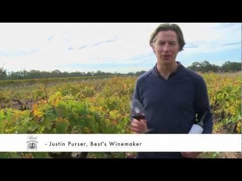 Justin Purser talks about the  Best's Bin 0 Shiraz www.bestswines.com.au