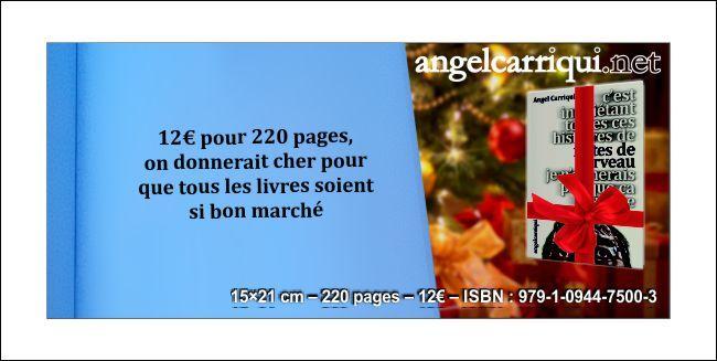 12€ pour 220 pages, on donnerait cher pour que tous les livres soient si bon marché