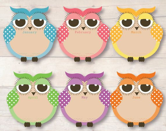 Busy Little Bugs - Spotty Owl Birthday Chart for Child Educators 12 months1