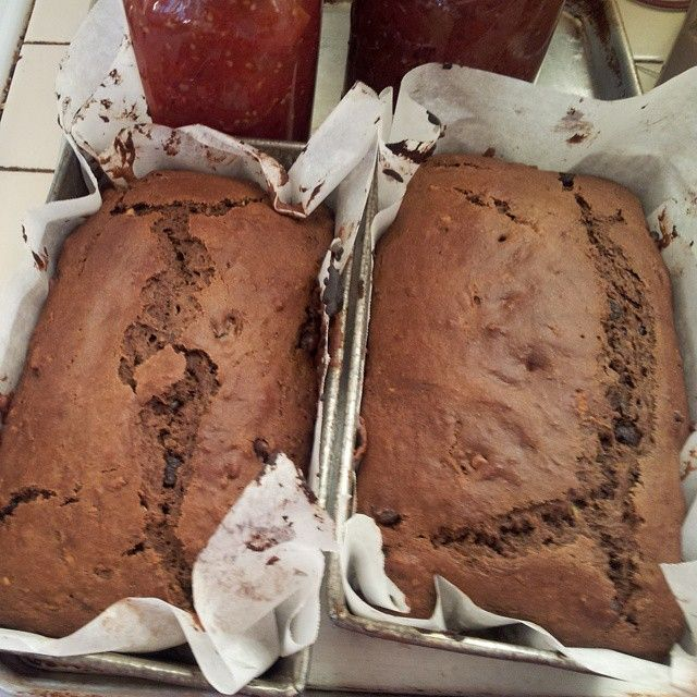 chocolate zucchini bread from Christine Sine