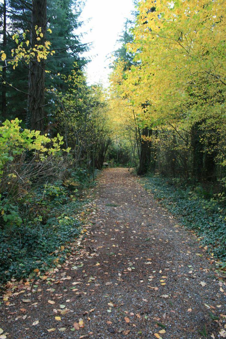 Westwood Lake Trail. Nanaimo, BC.