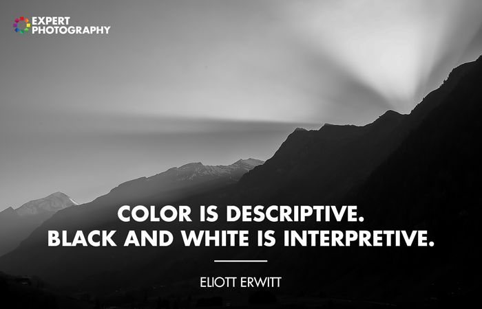 12 Best Black And White Quotes Photography Inspiration Quotes White Black And White Quotes Inspirational Quotes About Photography