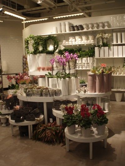 välkommen till min blogg! Här kan du läsa om vad som händer i min vardag, hur det är att jobba som florist.