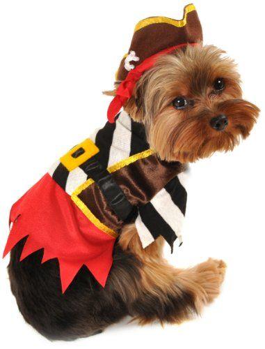 Anit Accessories Medium Rustic Pirate Dog Costume,  16-Inch