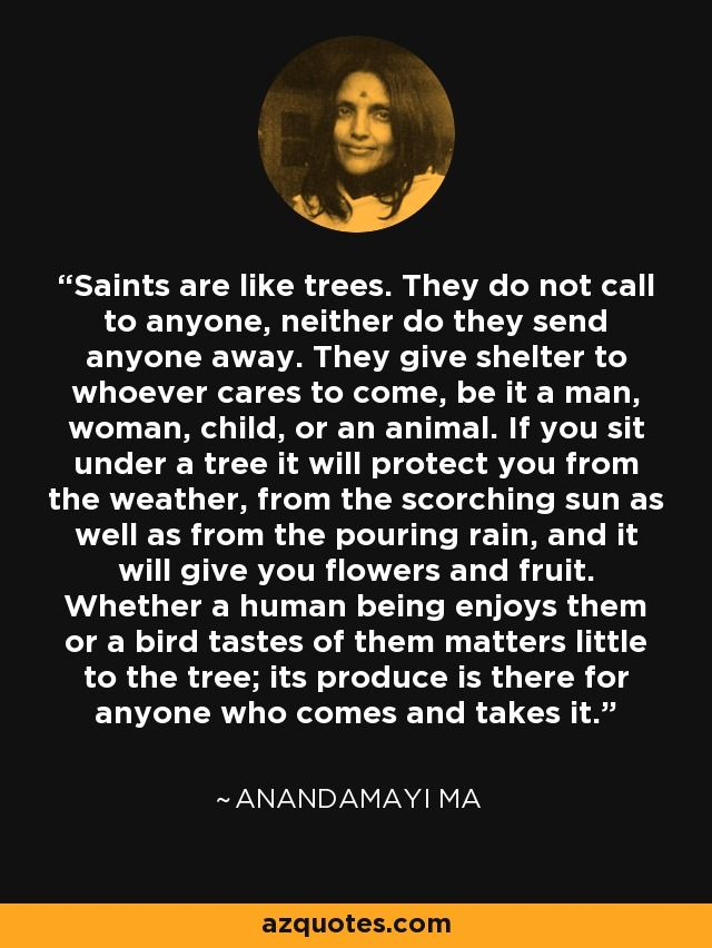 Saints are like trees. They do not call to anyone, neither do they send