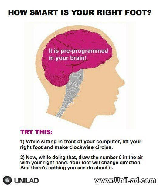 Haha this is crazy!: Mind Blown, It Work, Mindblown, Hands Blower, Stuff, Foot, Random, Funny, Things